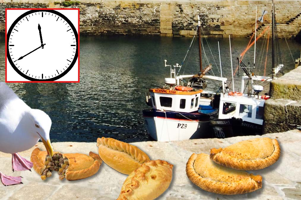 Picky seagulls snapped eating only genuine Cornish pasties