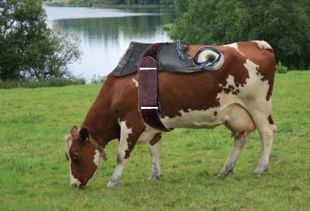 British company launches Methane capture system for cows