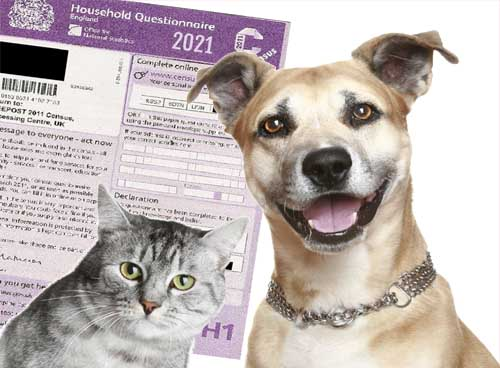 2021 Census will include questions on gender of pets